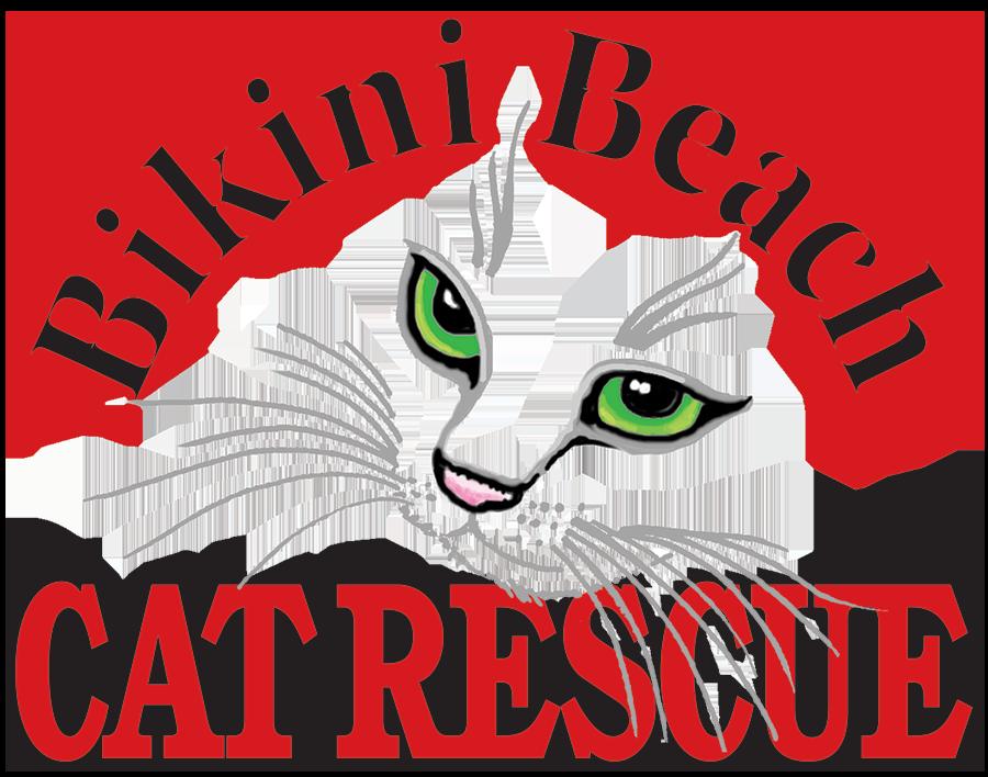 Bikini Beach Cat Logo
